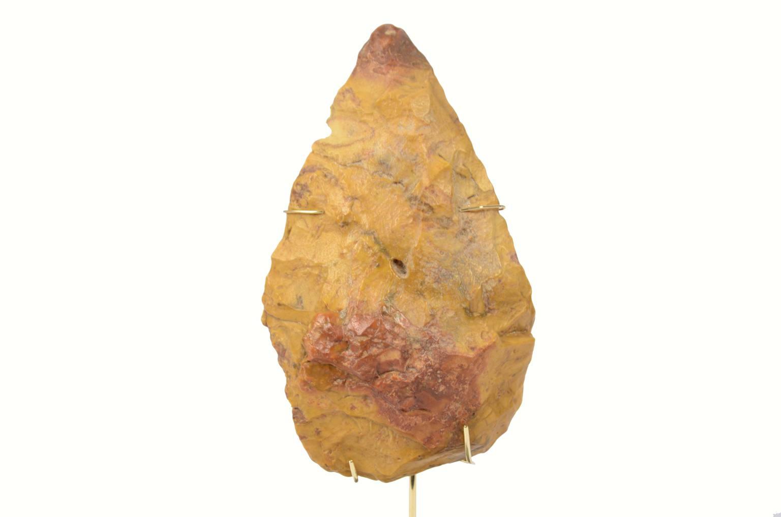 Storia naturale/5910A-Amigdala antica