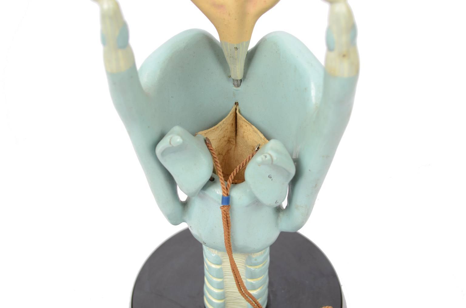 Strumenti medici d'epoca/6132-Modello trachea