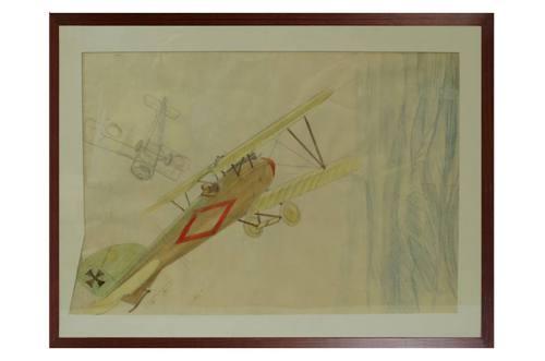 Aerei d'epoca/34-Albatros DV A/Più info